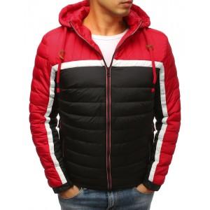 Sportovní pánská zimní bunda ve třech barvách a s kapucí